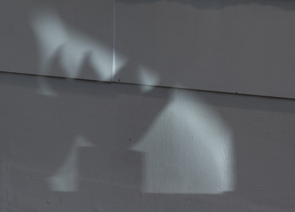 Shadows / skuggor
